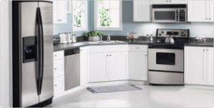 Kitchen Appliances Repair Milton